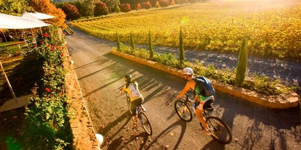 Pedalling between local producers is a great way to make the most of the food and wine that northeast Victoria has to offer