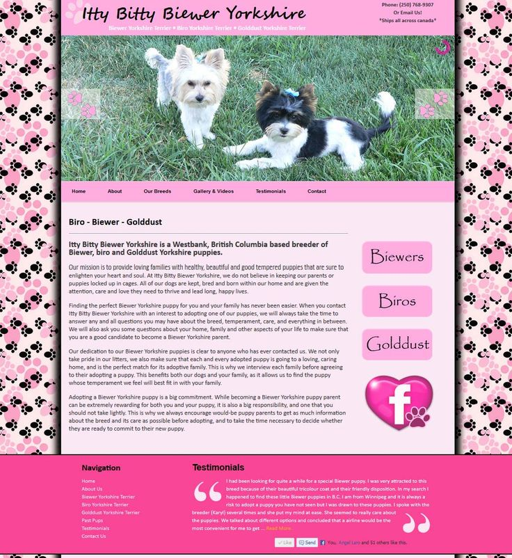 Breeder Website Design #webDesign