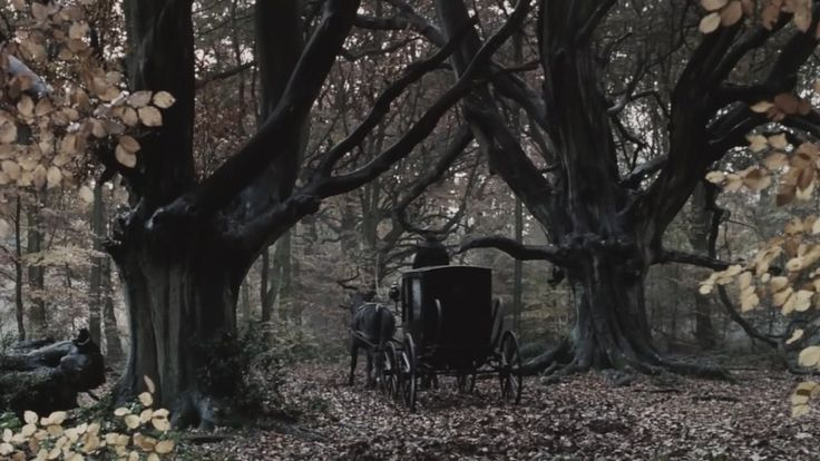 This looks like the opening scene of my Gothic fantasy novella, The Forests of Evenlear.