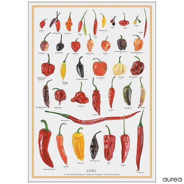 Chili Plakat A2 størrelse fra forlaget Koustrup.