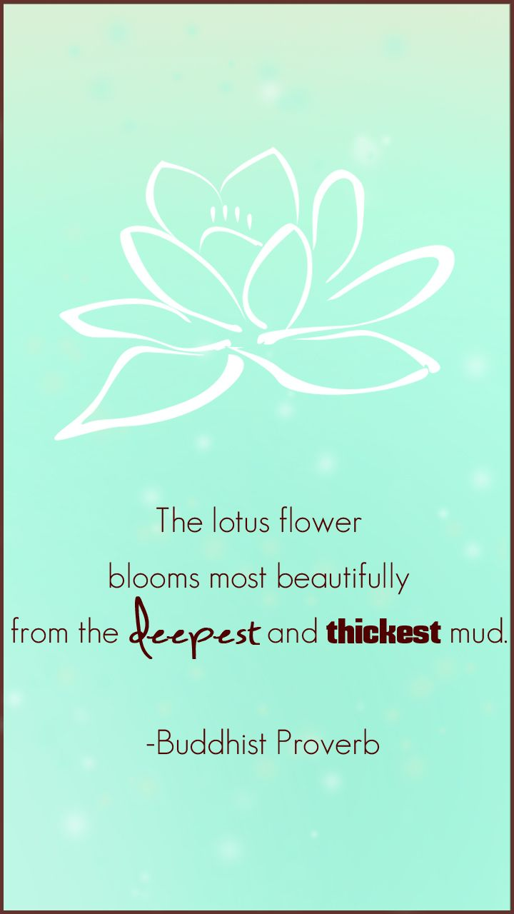 55 best lotus quotes images on pinterest lotus flowers buddhism the lotus flower blooms most beautifully from the deepest and thickest mud buddhist proverb izmirmasajfo Image collections