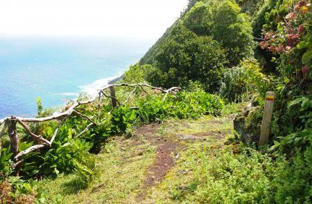 PRC6SJOTrilho do Norte Pequeno - Mapas e GPS - Percurso Pedestre em São Jorge - Trilhos dos Açores