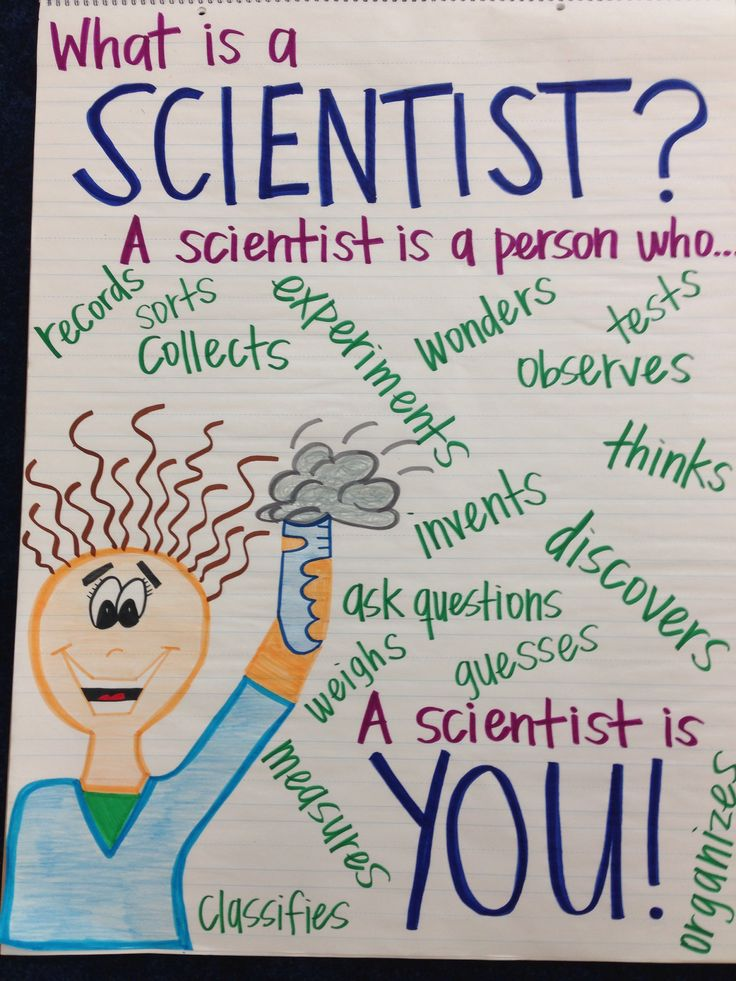What is a Scientist? Anchor Chart