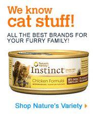 cat food,