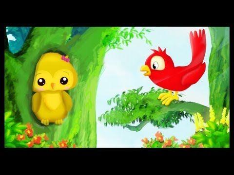 Coucou Hibou Dans la forêt lointaine - YouTube