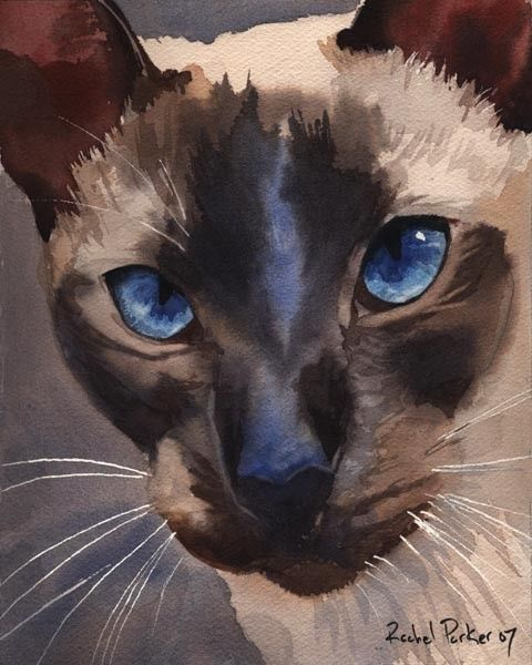 A watercolor painting of a Siamese cat that looks like my cat named Bailey (Bailey's Irish Cream).
