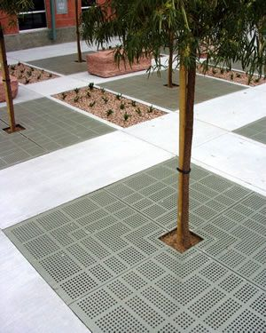 very large tree grate