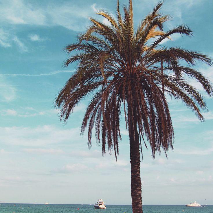 Cala Mayor beach 2015