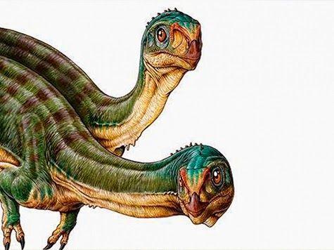 EVOLUCIONISMO E CRIACIONISMO: Descoberto no Chile um dos dinossauros mais estran...