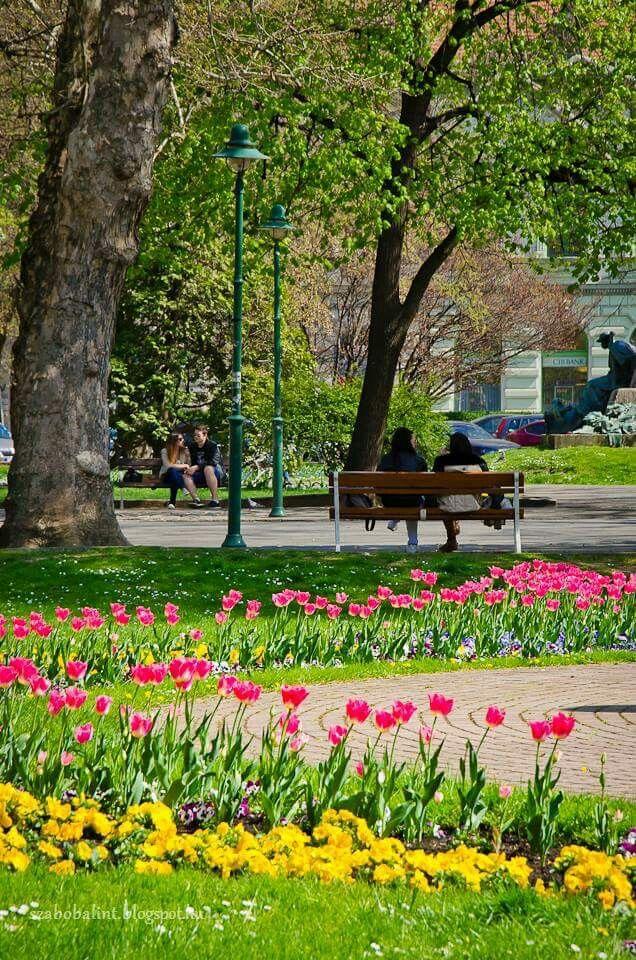 Mood, Szeged, Hungary