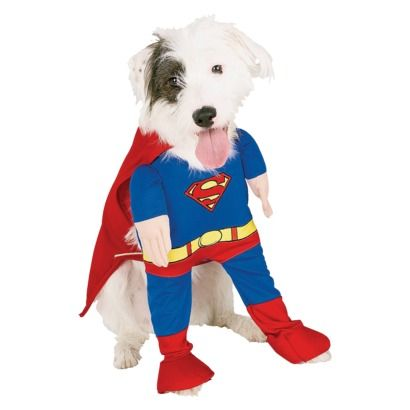 Trusty companion by day, super hero by night. #Superman Pet Costume. 2-piece polyester costume for dogs. Available in S, M, L, or XL. #Halloween #Costume
