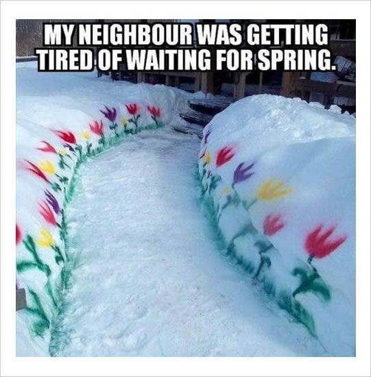 neighbor's spring funny memes