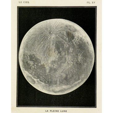 Check out this item at One Kings Lane! Moon's Surface, 1877