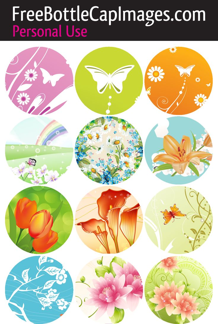 33 best butterflies and dragonflies images on pinterest collage