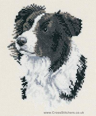 Dogs - Border Collie - DMC Dog Cross Stitch Kit