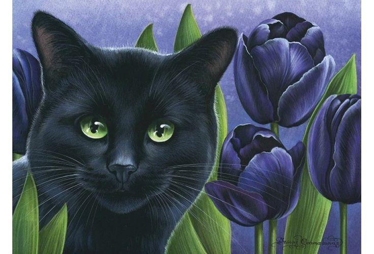 Открытки с черной кошкой, открытки для