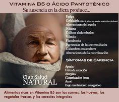 Vitamina B5 o Ácido Pantoténico Para qué sirve