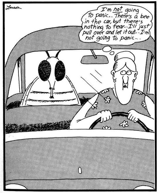 28 Best Driving Cartoons Images On Pinterest