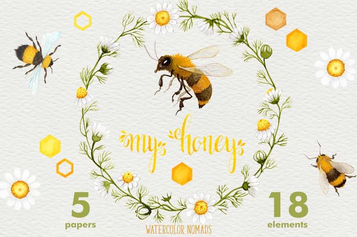 Bee My Honey - watercolor graphics - Illustrations - 1