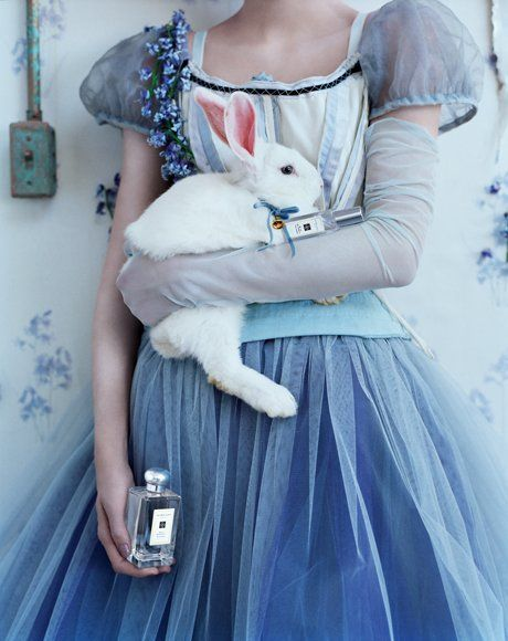 """Wild Bluebell"" 