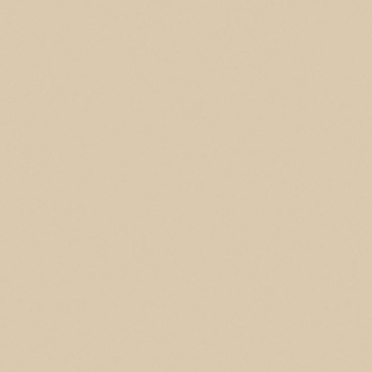 beige- wall colour  Office