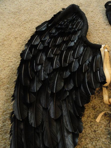 Just love the wings for doing a Maleficent costume. Different colored feathers and a larger wing span.