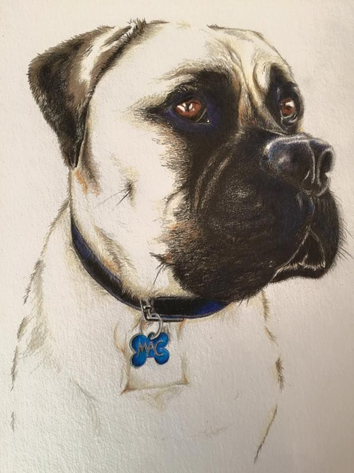 Mac the Dog. Commission piece