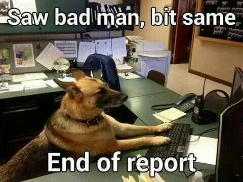 28 best Police Dog Humor images on Pinterest | German ...