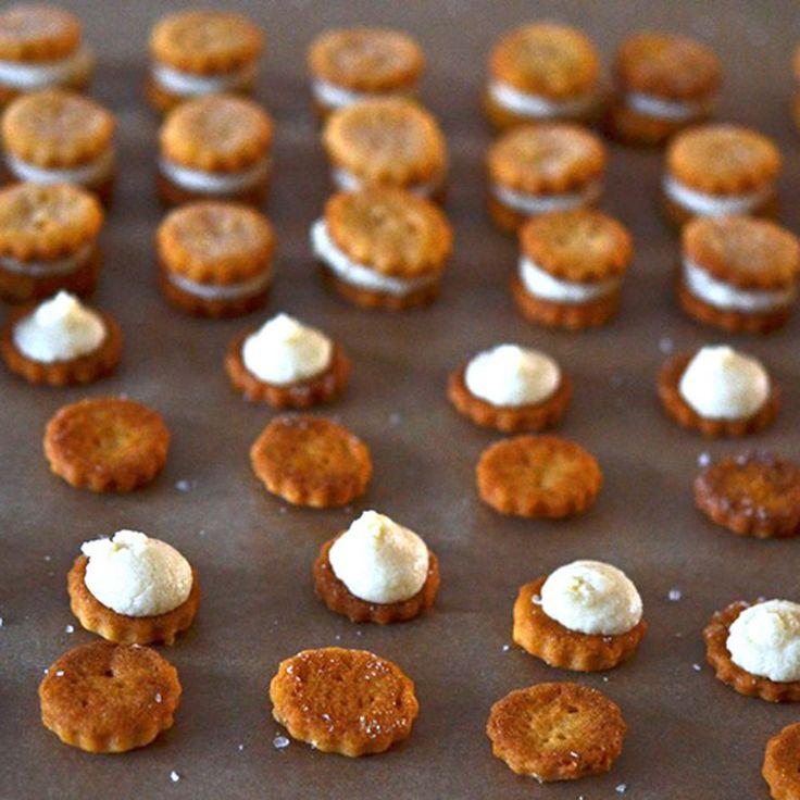 Gluten-Free Ritz Bits-Style Crackers Recipe on Food52 recipe on Food52