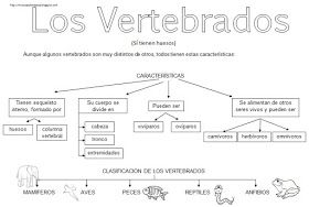 Los vertebrados