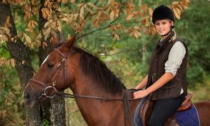 Groupon - Beginner or Intermediate Out-Ride with Braai Pack and Sides from R490 with Horse Riding Adventure (Up to 55% Off) in Gauteng. Groupon deal price: R 490