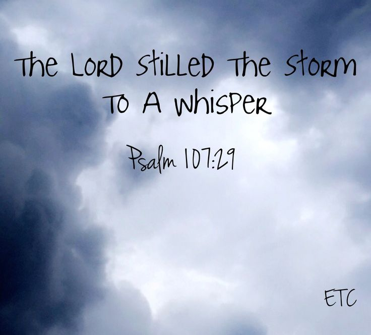 The lord stills the storm
