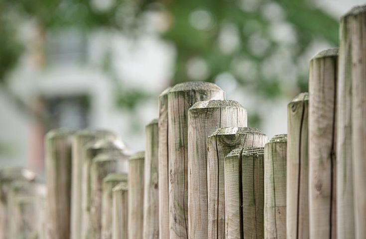 #barricade #barrier #border #boundary #demarcation #fence #garden #garden fence #palisade #partition #protection #solid #wall boards #wood #wood fence