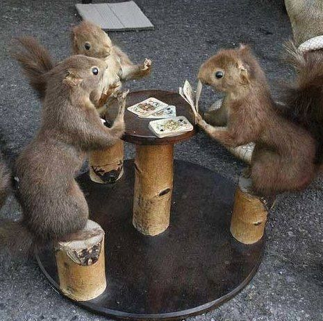 Playing poker with some friends :) #HappyFriday #poker #PlayPoker