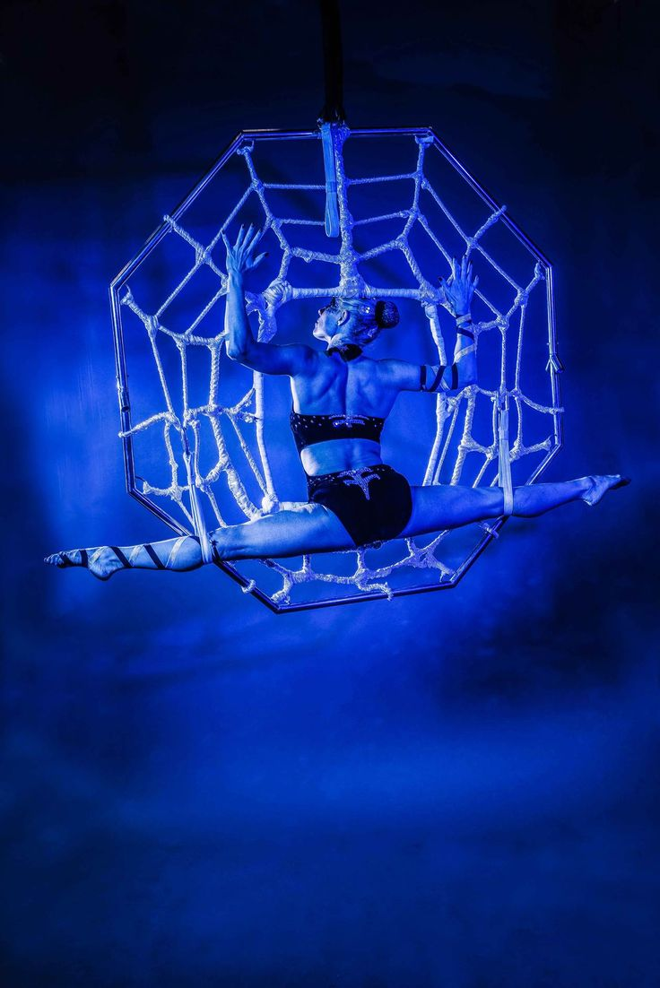 spider silks A new book on uses of spider silk shows its role in nature, science, technology,  art and the human imagination.