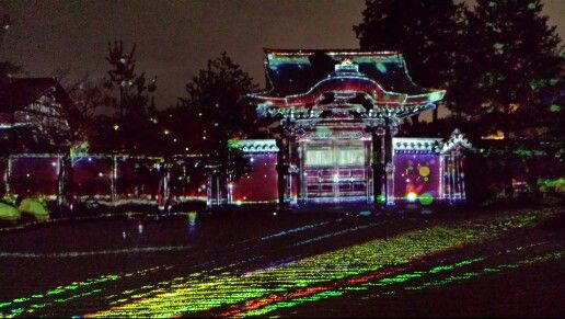 Projection Mapping at the Garden