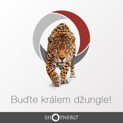 """""""V Česku existují miliony webů a tisíce e-shopů. Pokud chcete návštěvníky opravdu zaujmout a proměnit je v zákazníky, hýčkejte si je a dávejte jim něco víc, než běžná konkurence,"""" radí náš SEO specialista Ondra. Pokud chcete vědět více o tom, jak vytvořit kvalitní obsah vašeho webu, a to takovým způsobem, aby byl atraktivní pro vaše potenciální klienty, přečtěte si náš článek ►►► https://www.shopnero.cz/jak-…/jak-vytvorit-kvalitni-obsah__6. #web #SEO"""