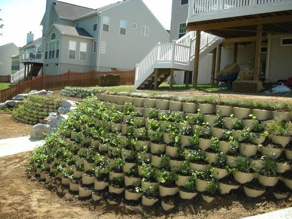 Amenajari gradini.Arhitect peisagist, proiectare si amenajare gradini, design.gradina simpla,mica,pe deal,peisagistica preturi proiect gradina.Plante.