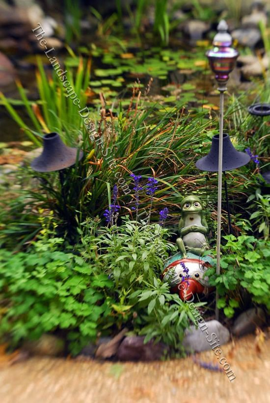 Pinterest discover and save creative ideas for Pond decoration ideas