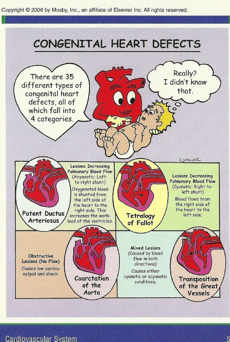 ☤ MD ☞✪ All about the heart. #cardiology #pediatry