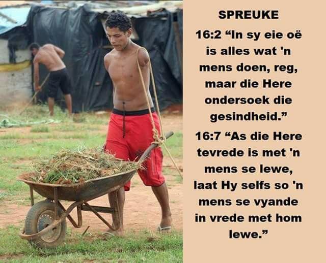 SPREUKE 16:2 Al die weë van 'n man is suiwer in sy oë, maar die Here toets die geeste.