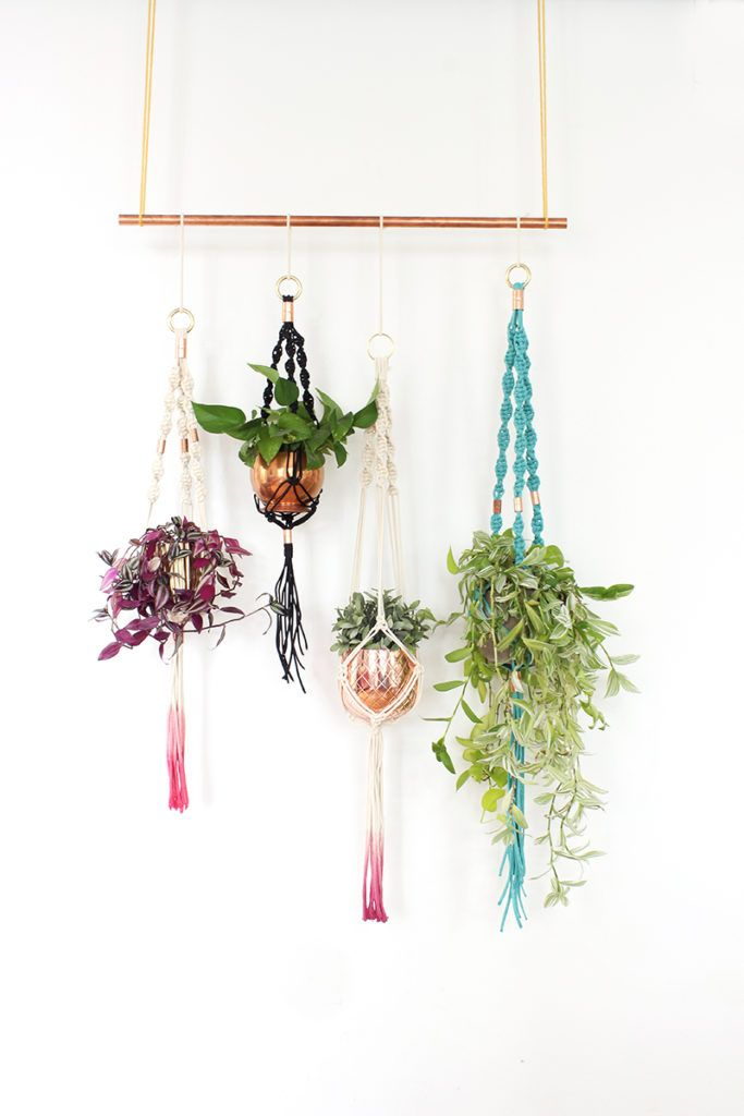 Diy macrame plant holders a chic way to hang indoor for Ways to hang plants inside