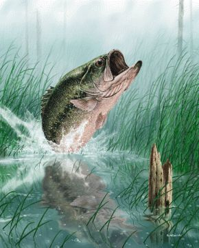 printout bass fish | ... of a two menthat arecatching a largemouth bass from a fishing boat