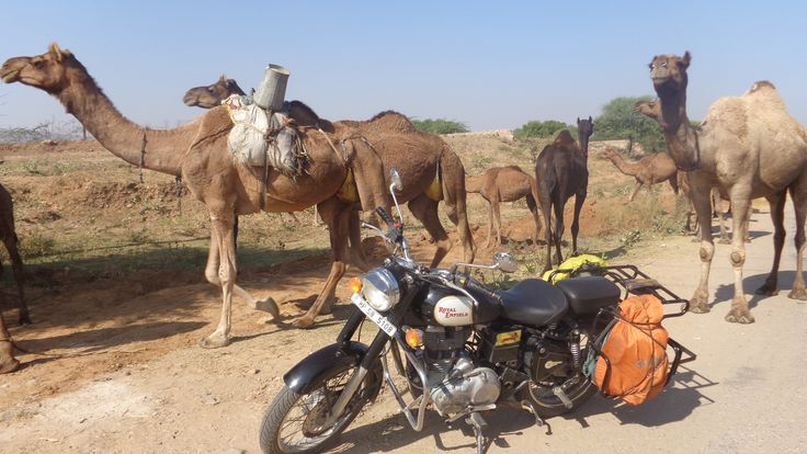 """A mesmerizing two wheels adventure in the """"The Land of Maharaja""""."""