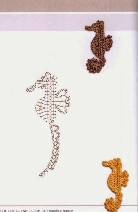 un hyppocampe miniature