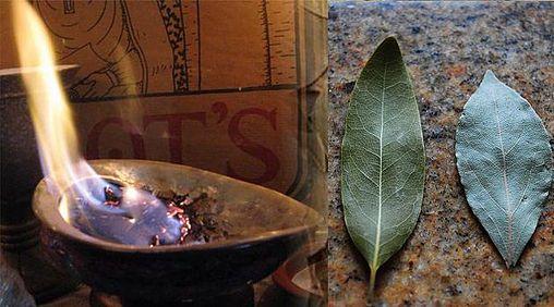 Burn a Bay Leaf in Your House. The Reason? You'll be Amazed! | godsgardenofeden