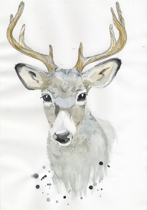 Deer - Lissa Thimm