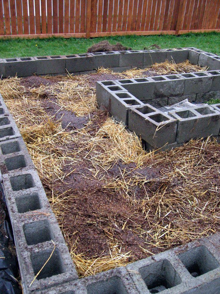 Raised Garden With Cinder Blocks Put Strawberry Plants