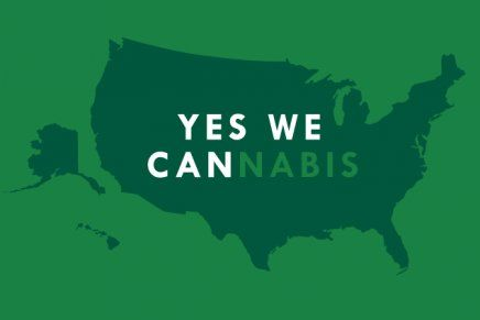 Marijuana Election 2014 Results