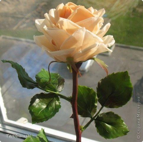 Розы из холодного фарфора и как сделать молды для лепки листьев (29) (484x480, 116Kb)